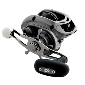 Lexa 300 HS-P Baitcast Star Drag Fishing Reel