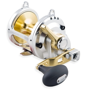 Talica 20 2 Speed Overhead Lever Drag Reel