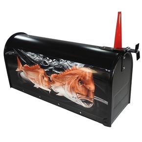 Snapper Letter Box