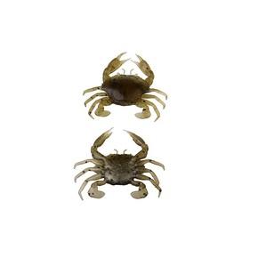 """3"""" 1/2 Oz 1 Pack Natuural Peeler Crab"""