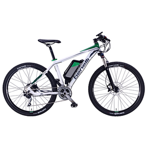 Alpan MTB Electric Bike