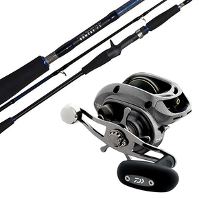 Lexa 300 HS-P Reel / Blue Backer LJ 602MHB Rod