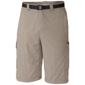Mens Silver Ridge Cargo Shorts - Fossil