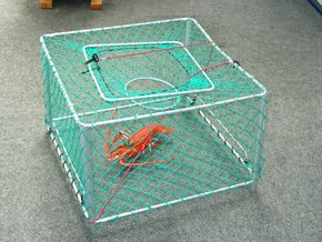 Collapsible Crayfish Pot-Square
