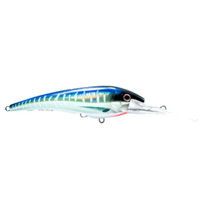 DTX Minnow Bibbed - Spanish Mackeral