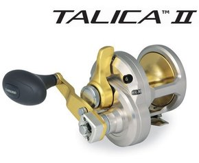 Talica 10 -2 Speed Overhead Lever Drag Boat/Jigging Reel