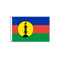 "New Caledonia Flag (Local) -45x30cm (18""x12"")"