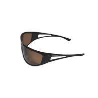 Antares II Sunglasses - Black / Smoke