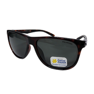 Glenroy Dark Tort Sunglasses