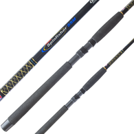 SPINFISHER SSM 7FT 8-10KG spinning rod