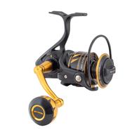 Slammer IV 5500 Spinning Reel